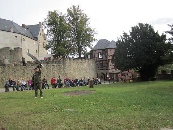 Burg-Falkenstein0013