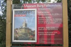 Burg-Falkenstein0001