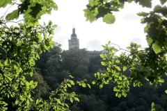 Burg-Falkenstein0005