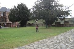 Burg-Falkenstein0012